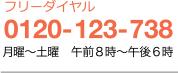 フリーダイヤル 0120-123-738